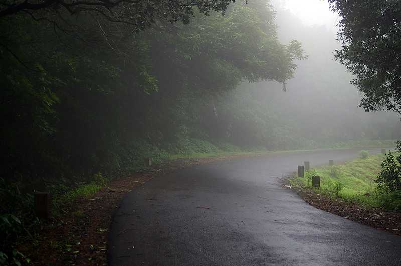 Amboli in the monsoon