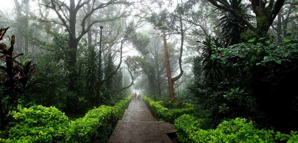 Nature walk in nandi hills