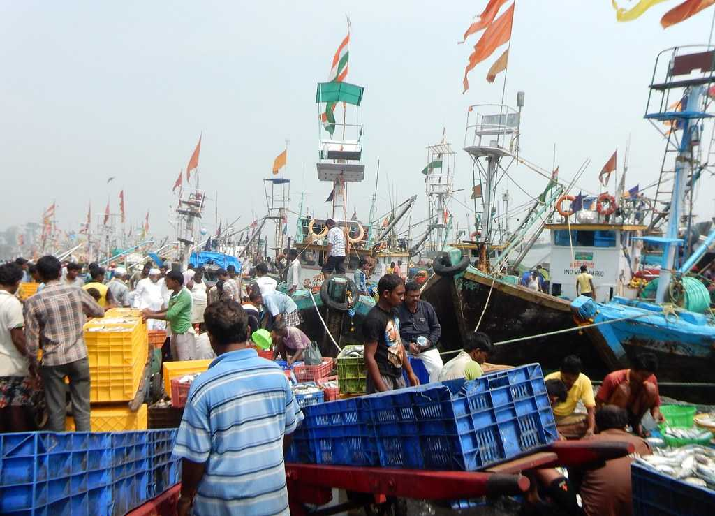Sassoon Docks Fish Market