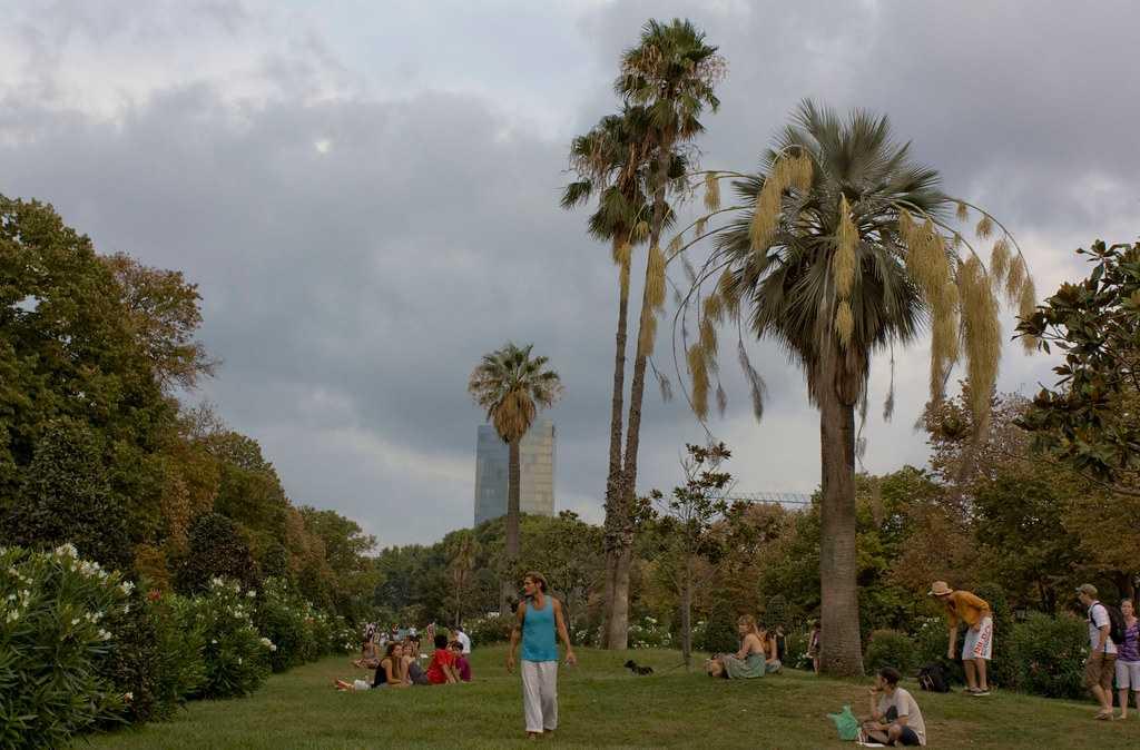 Picnics in Parc De La Ciutadella