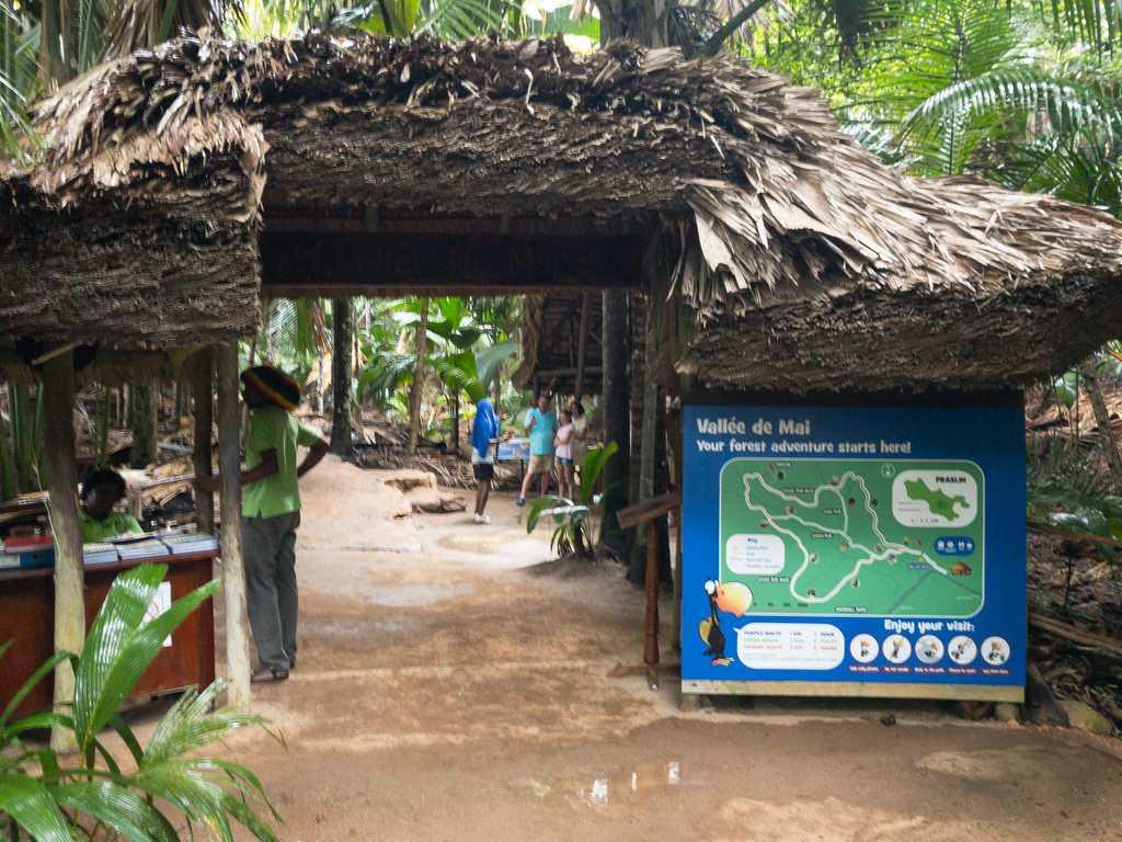 Vallee De Mai Natural Reserve Seychelles