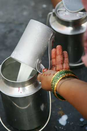 Milk in India, facts about india