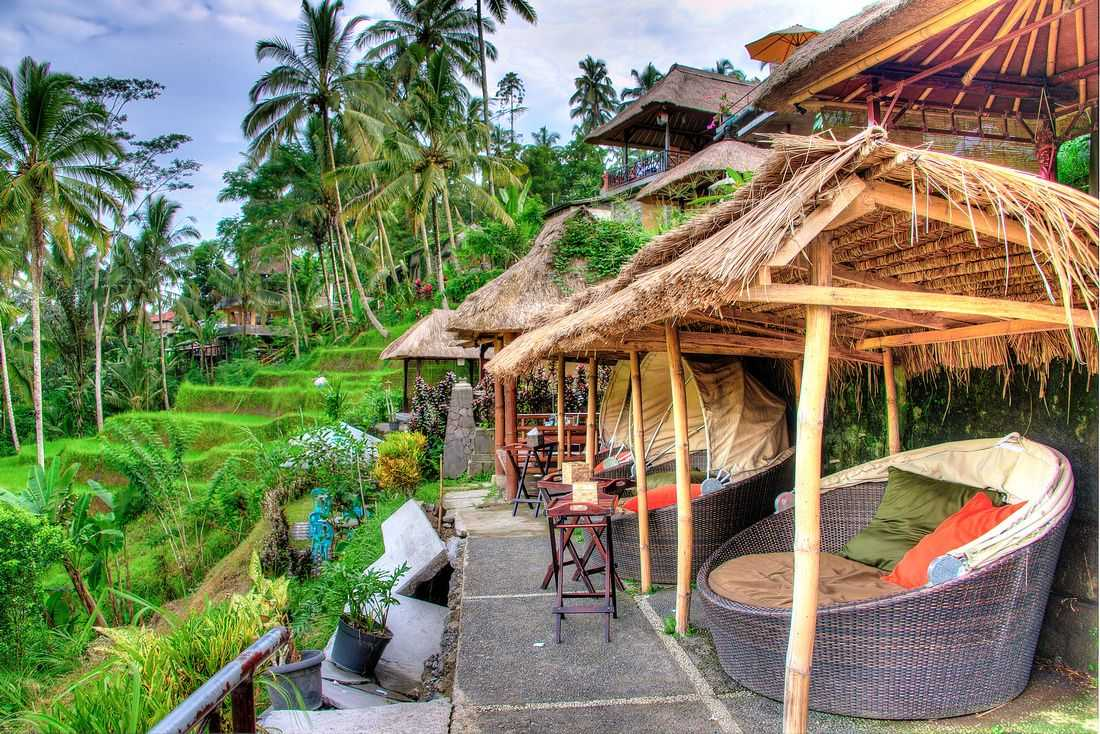 Tegalalang Rice Terrace Cafe