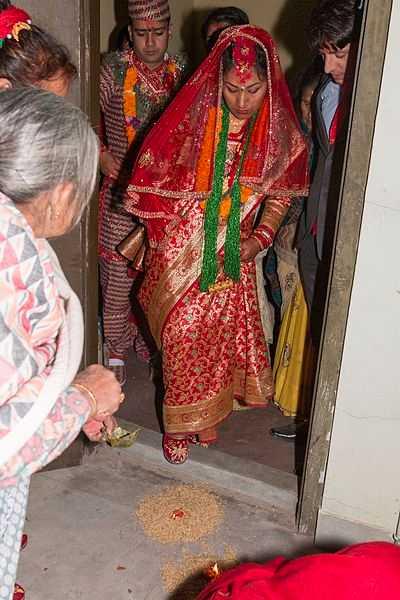 Nepali Saree