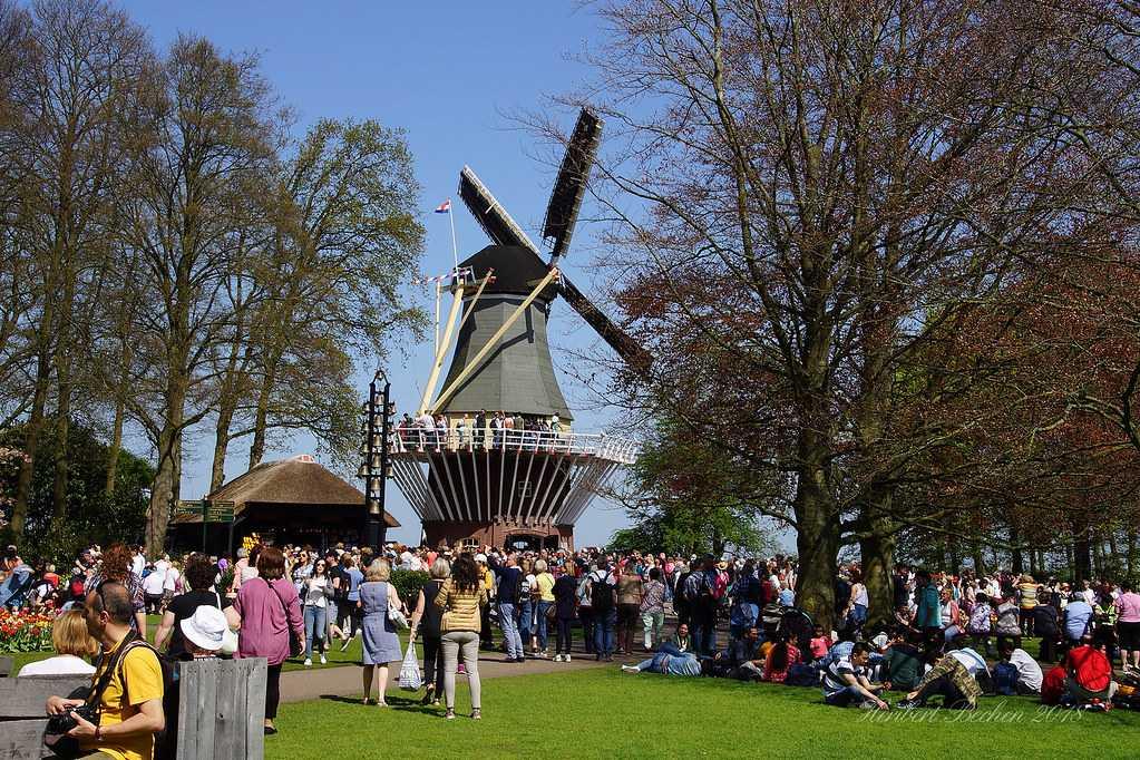Dutch Windmill at the Keukenhof