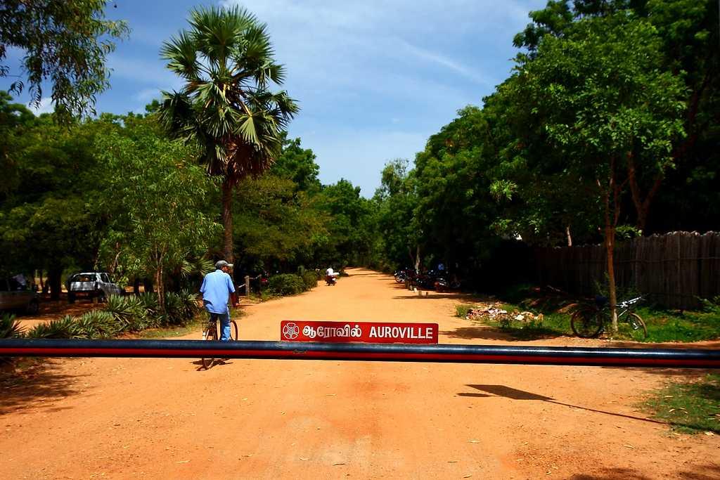 Summer Season, Auroville