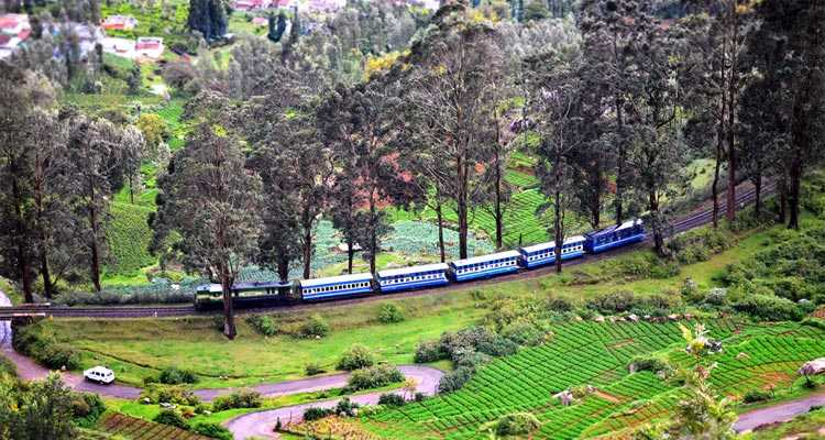 Coorg to Mysore Train