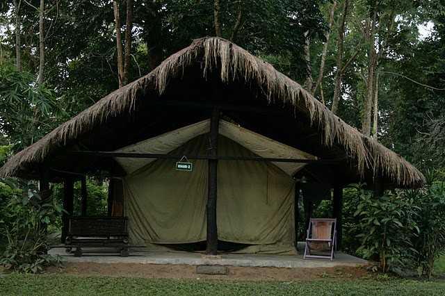Tents at Nameri Eco park