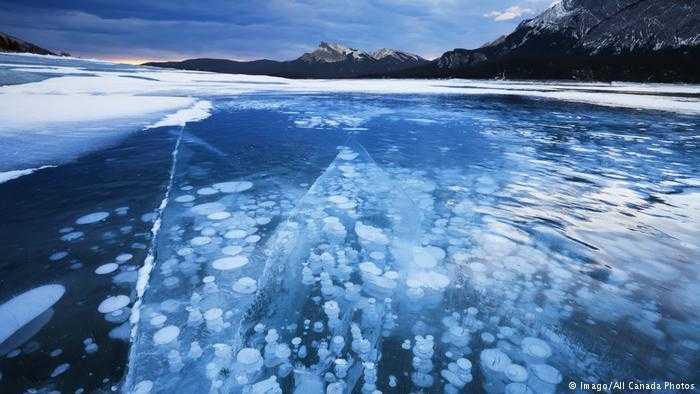 Frozen Bubbles (Canada)