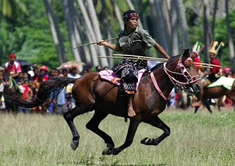Pasola Festival in Indonesia