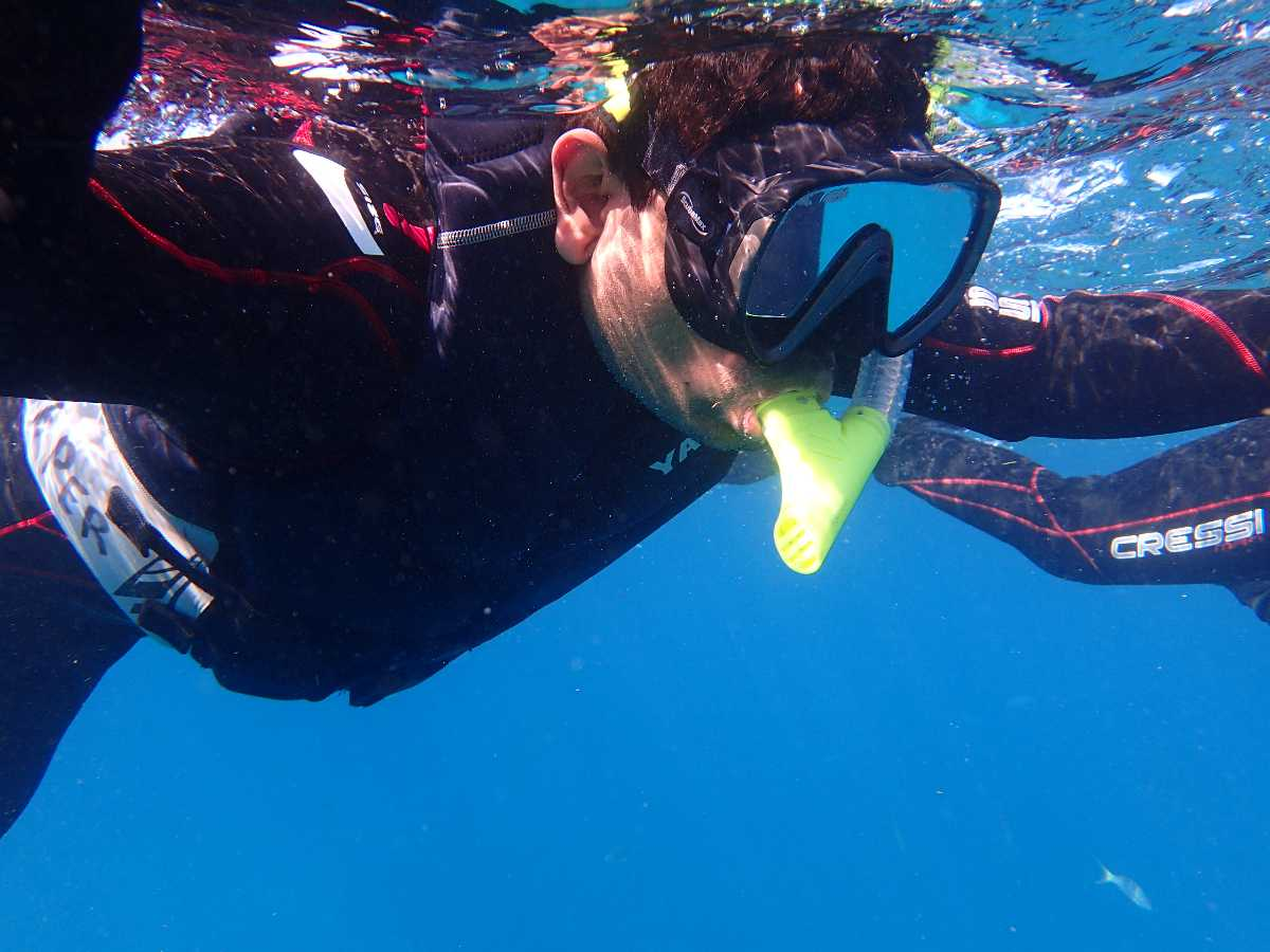 Snorkelling in Singapore