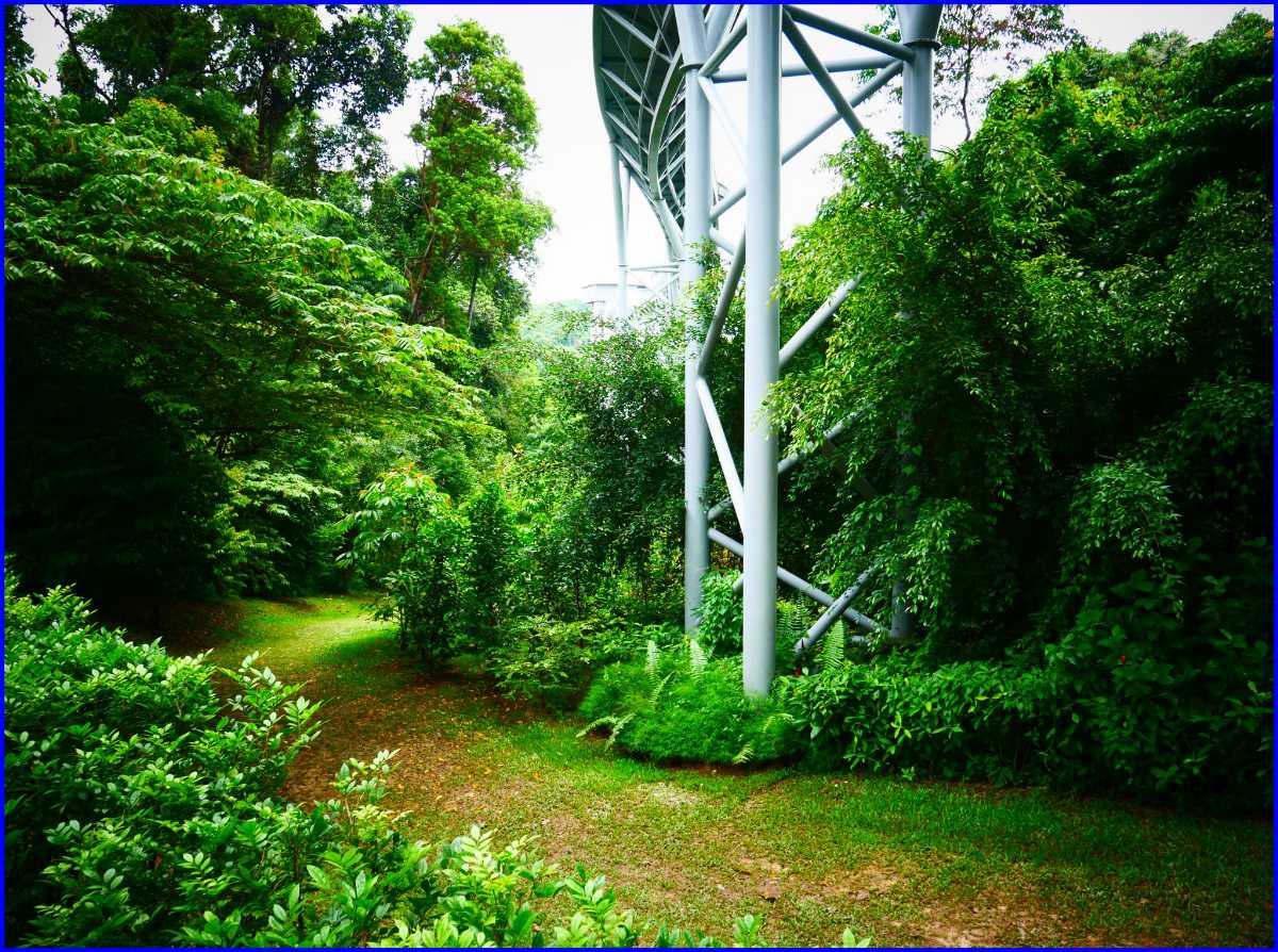 Fort Siloso Trail Singapore