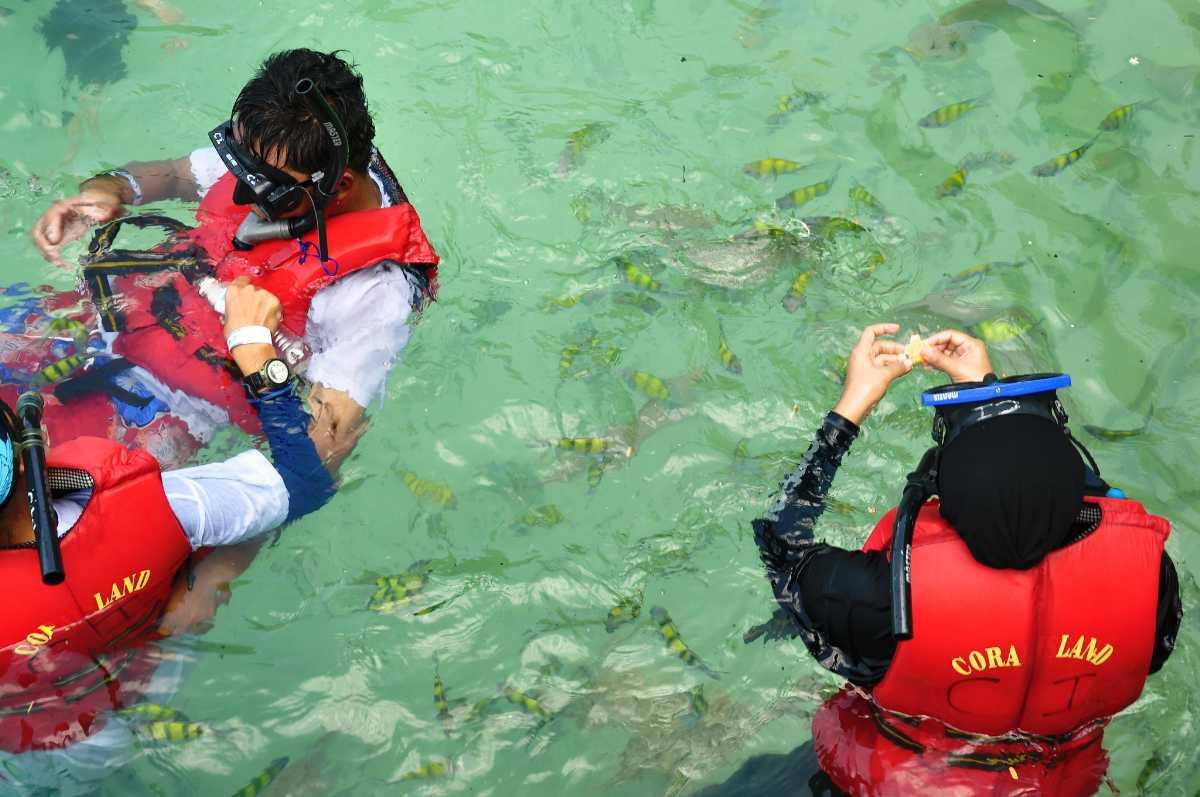 Diving in Pulau Payar, Langkawi