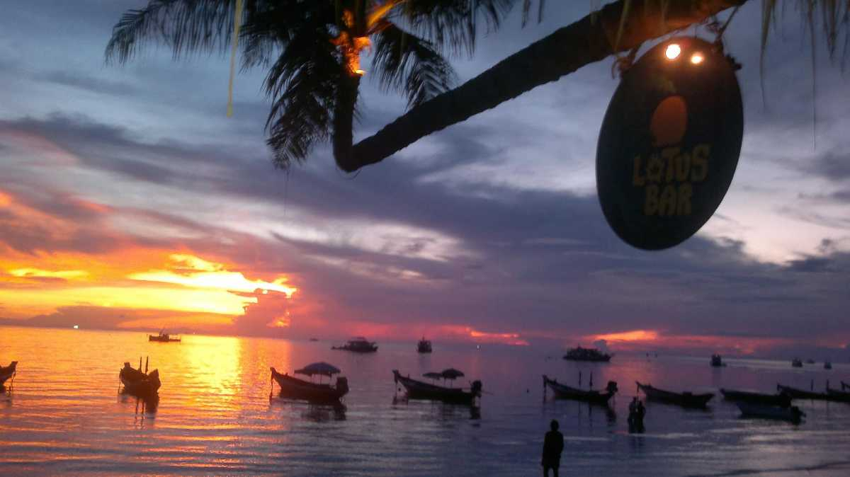The Lotus Bar, Koh Tao