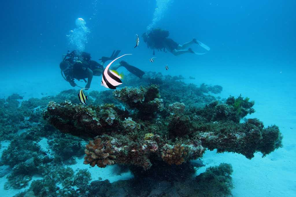 Deep Sea Diving, underwater excursions in Mauritius, excursions in Mauritius