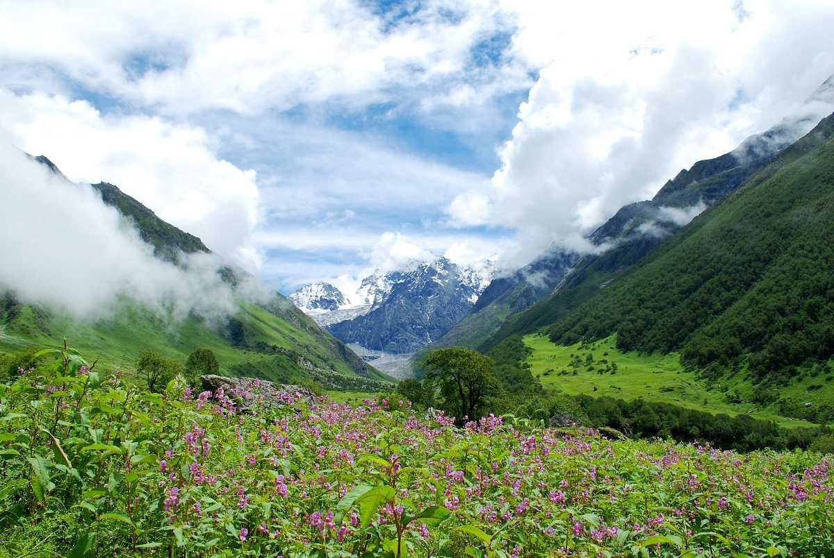 Valley of Flowers, Treks in Uttarakhand