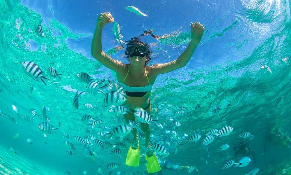 Snorkeling At Fujairah, Snorkeling in Dubai