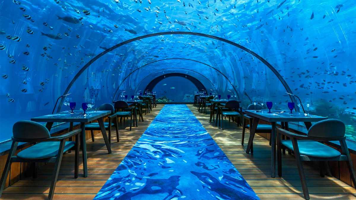 Ithaa Underwater Restaurant is a must visit in Maldives with Kids
