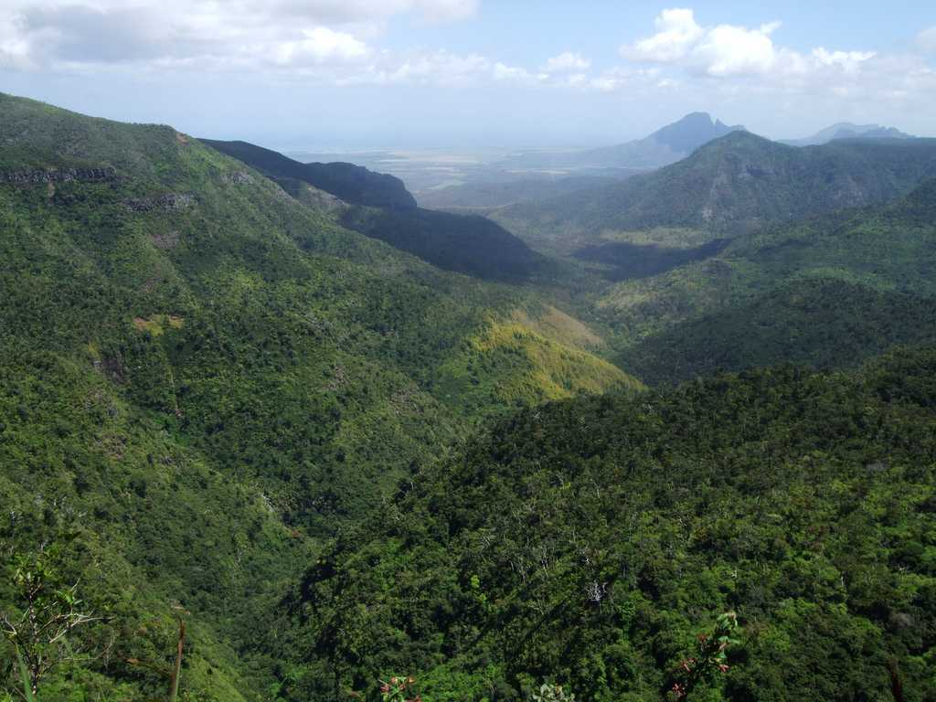 Black River Gorges National Park, hiking and trekking in Mauritius, excursions in Mauritius