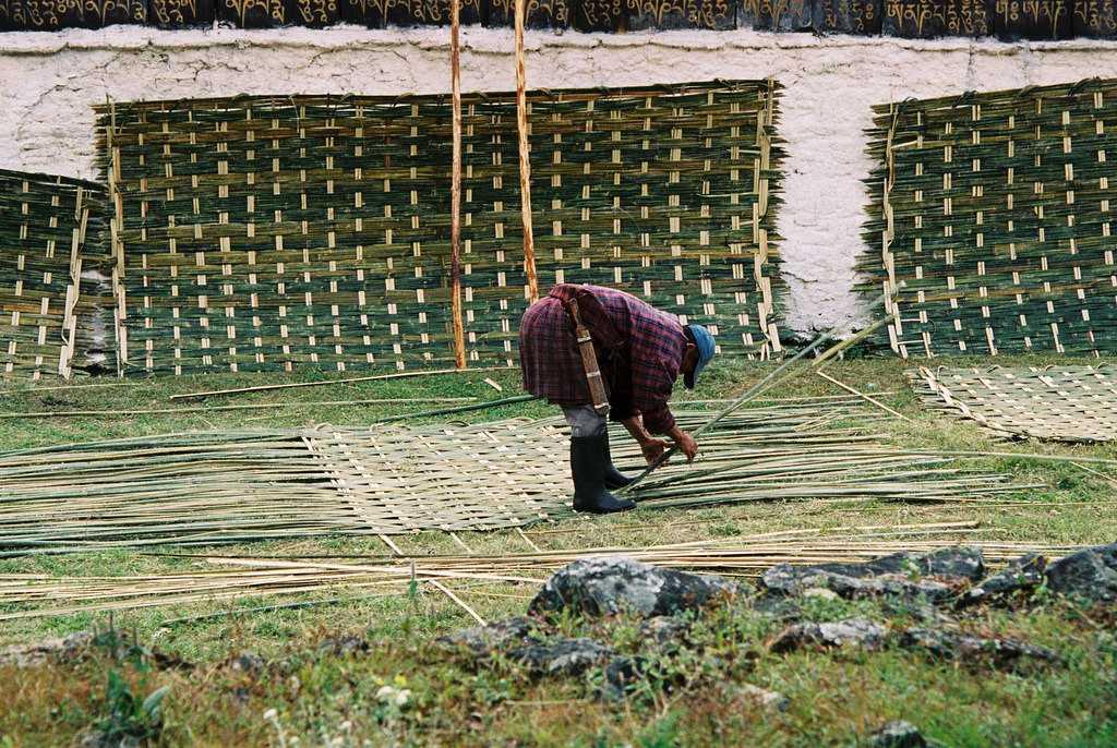 Cane Weaving in Bhutan