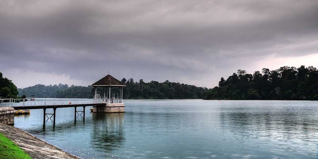 MacRitchie Reservoir, Hiking in Singapore