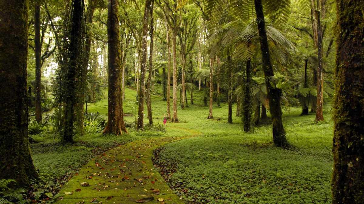 Parks in Bali