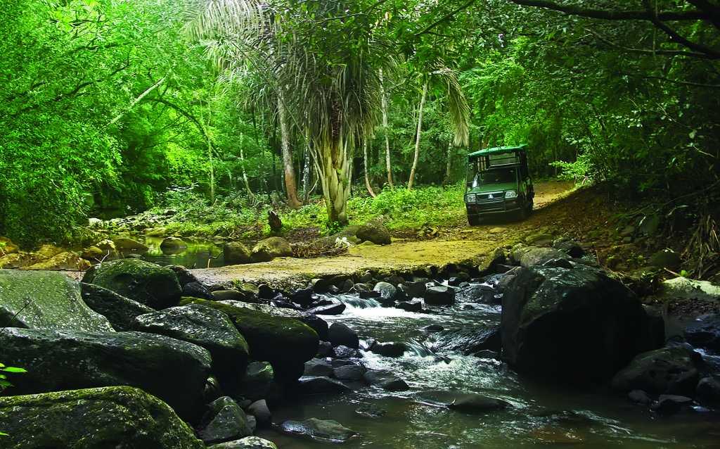 Frederica Nature Reserve
