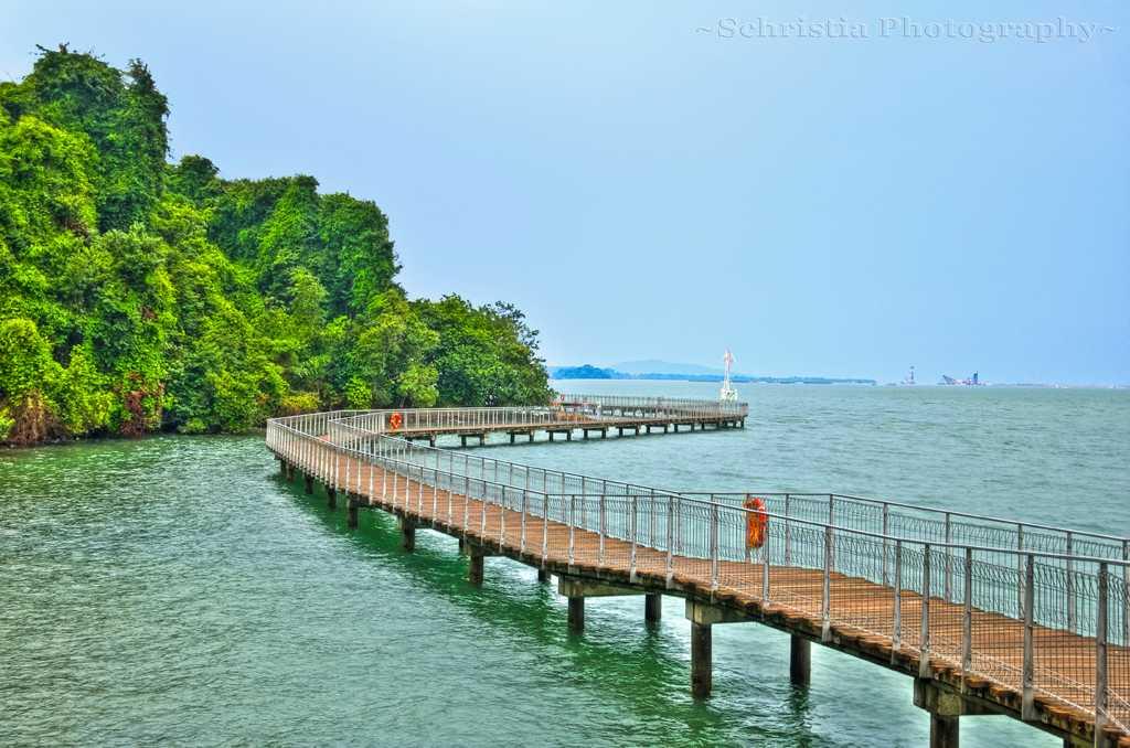 Chek Jawa Boardwalk Singapore