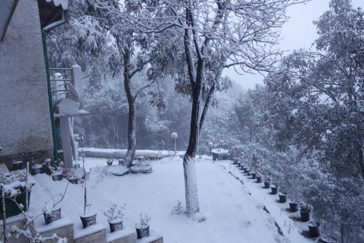 Winters at Iris Cottage, Mukteshwar