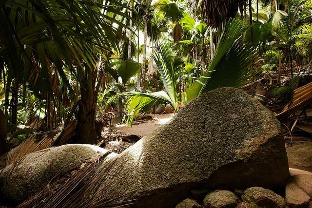 Praslin National Park, National Parks in Seychelles