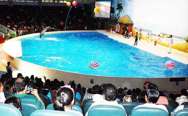Dubai Dolphinarium at Deira