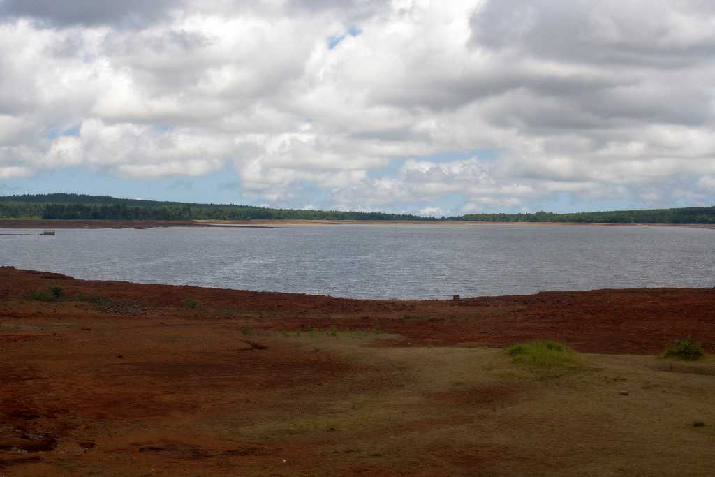 Mare aux Vacoas, Mauritius in September