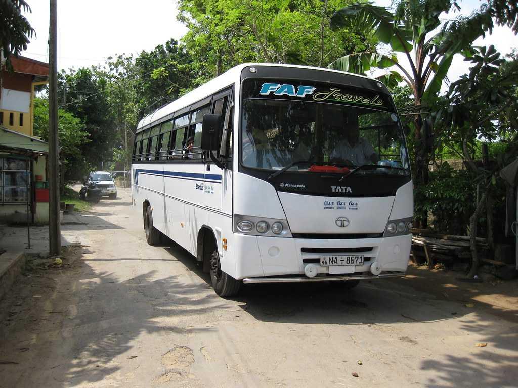 Buses to Dambulla