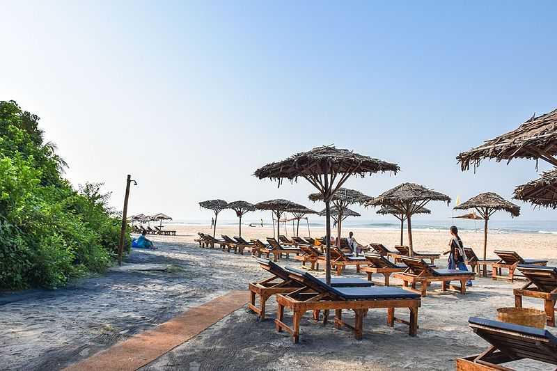 Baxter's Goa, Shacks in Goa