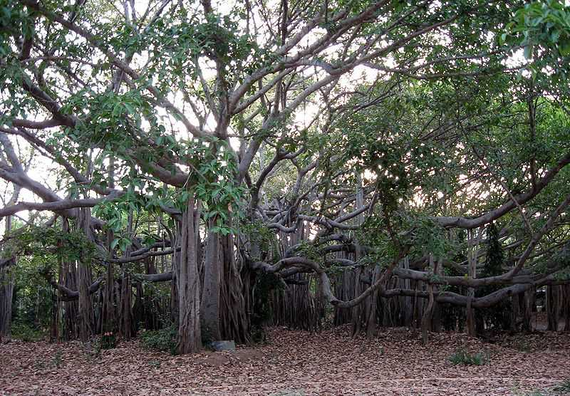 haunted places in chennai