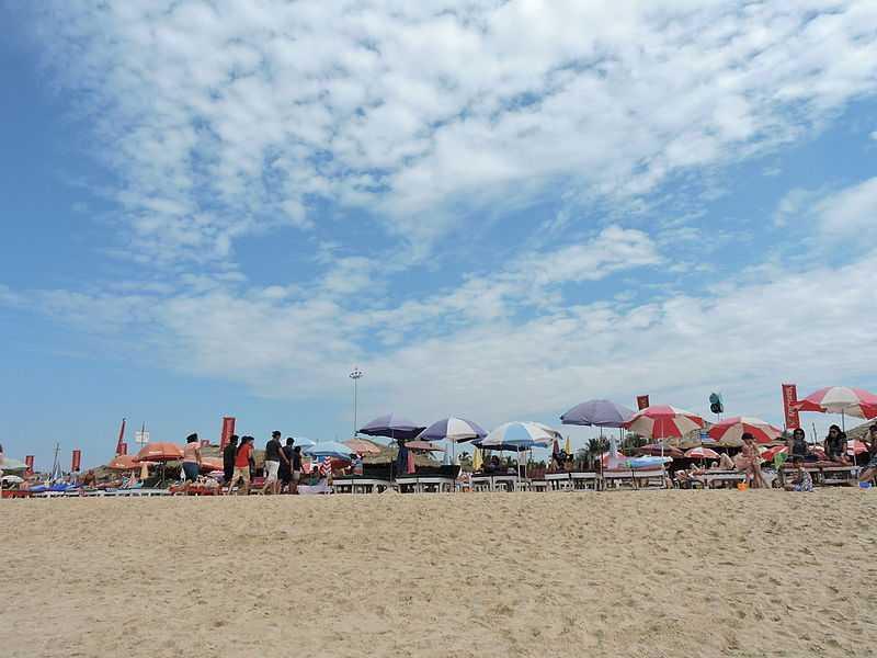 Calamari Goa, Beach Shacks in Goa
