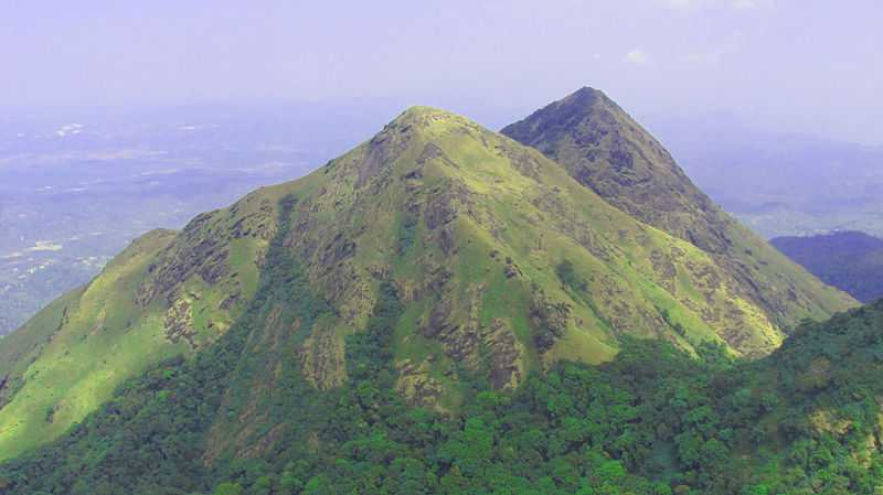 Chembra Hill, Wayanad