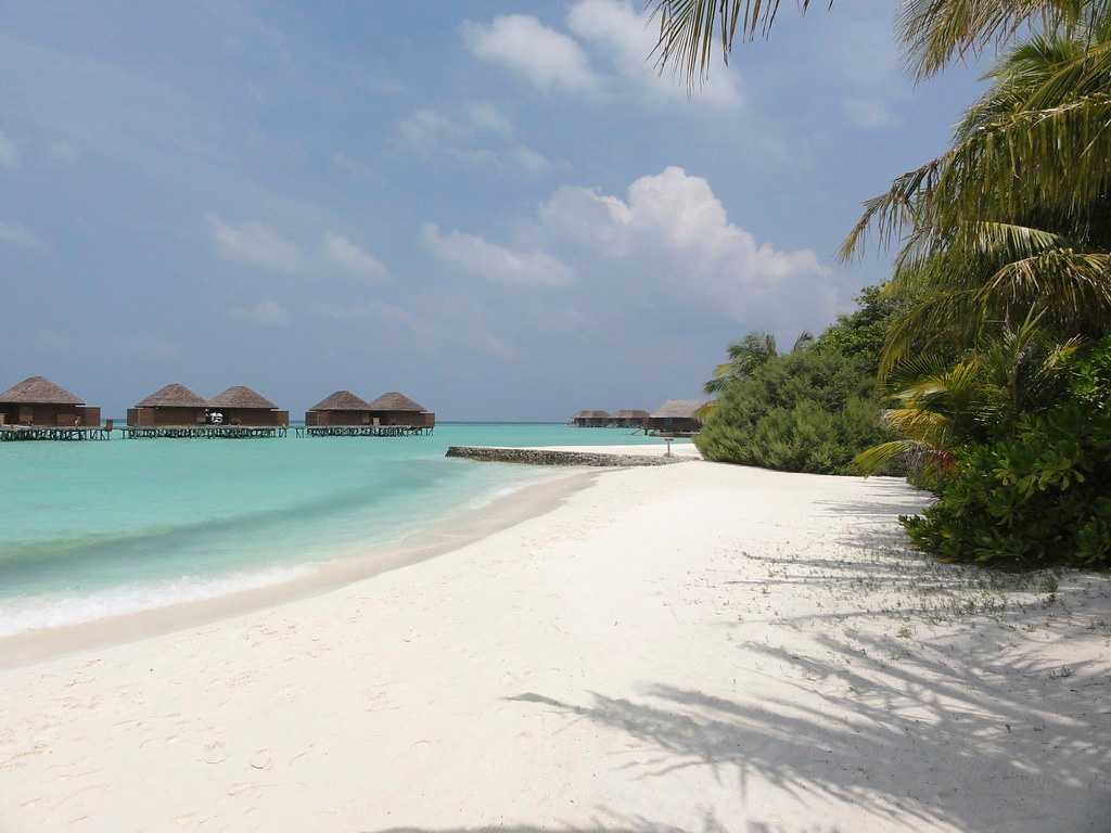 white sand beach, water, palm trees, sunrise in maldives