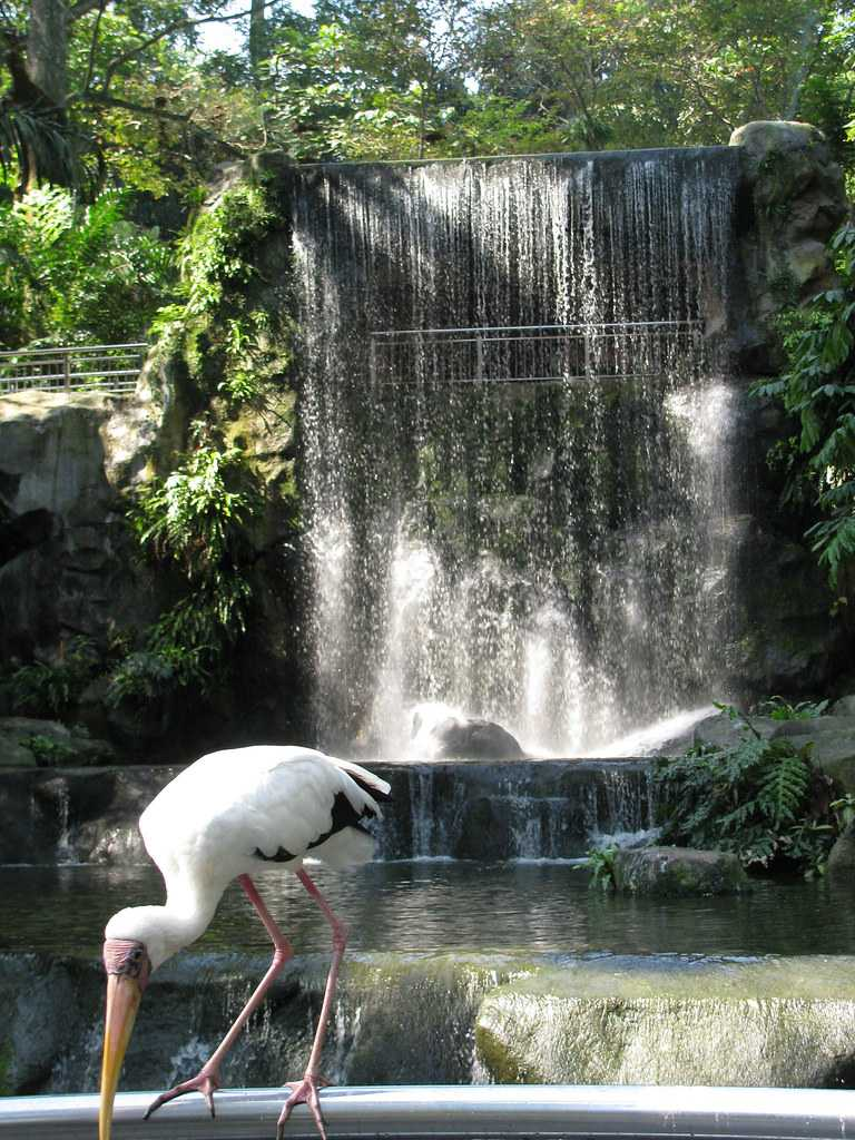 Kuala Lumpur Bird Park, Malaysia