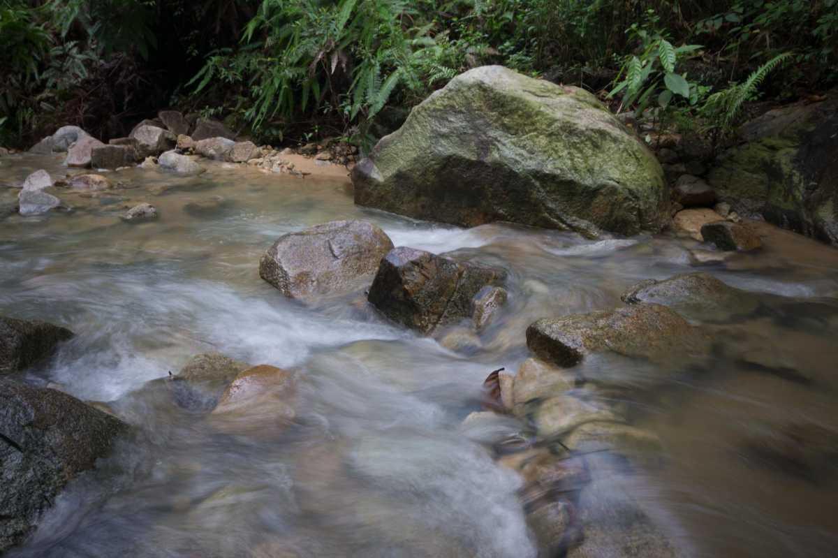 Mount Pulai