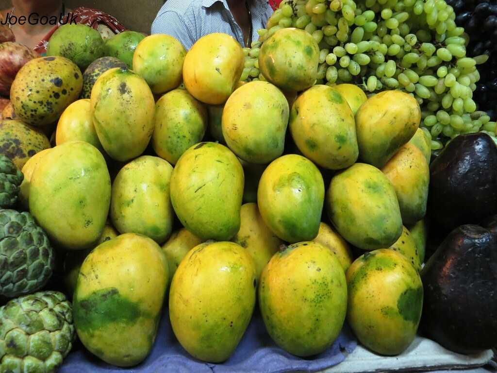 Neelam Mangoes, Mangoes in India