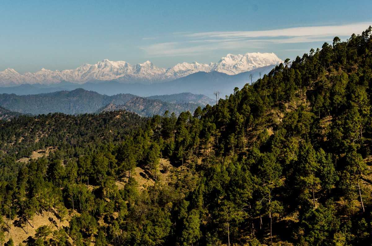 Binsar, Camping in Uttarakhand