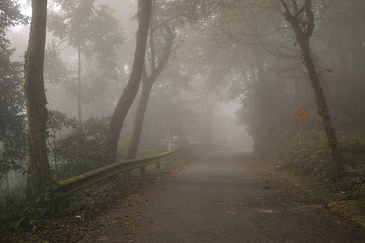 Foggy Road in Ba Vi National Park Vietnam