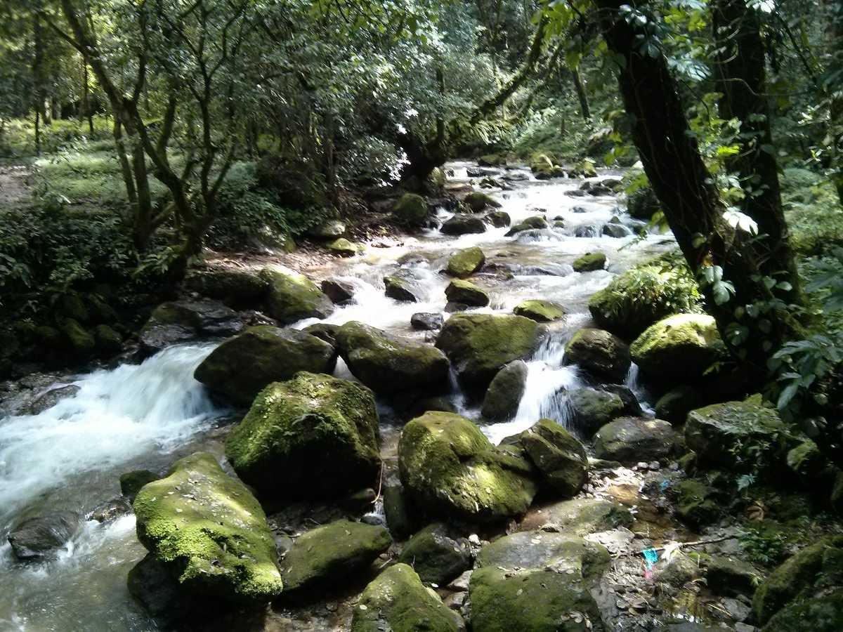 Sundarijal, Hiking in Nepal