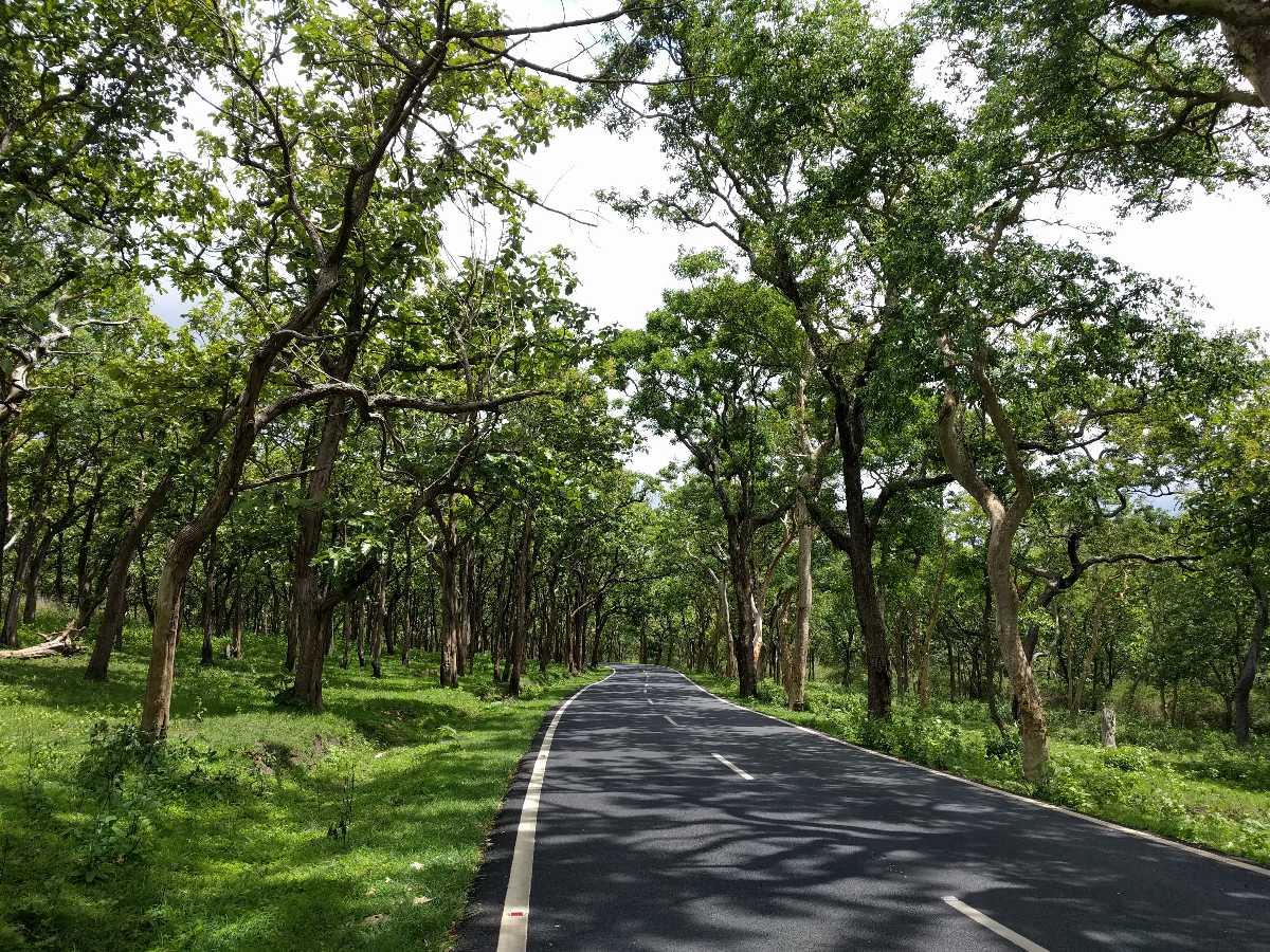Bandipur Park