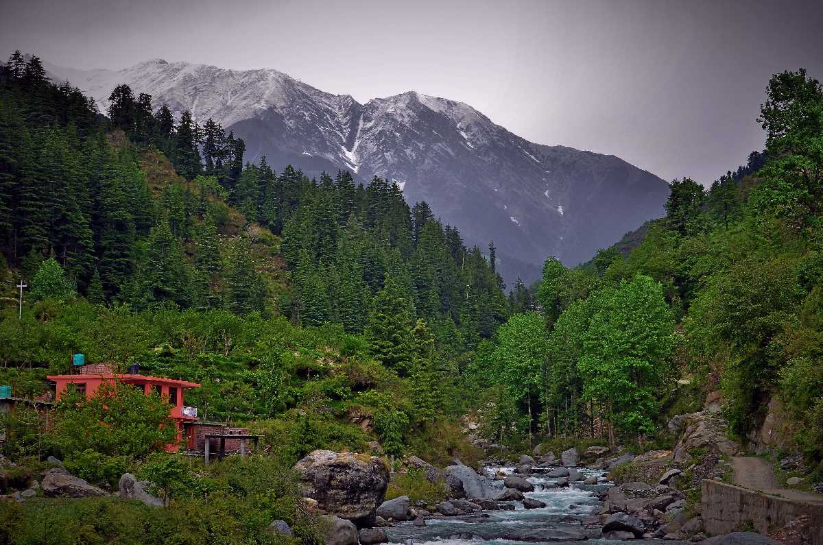 Barot Valley, Himachal Pradesh | Trek, Hotels & Things To Do