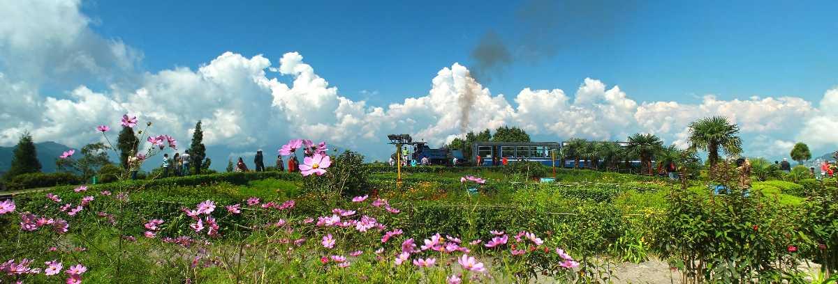 Batasia Loop of Darjeeling Himalayan Railway