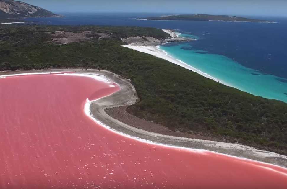 Pink Lake Hiller