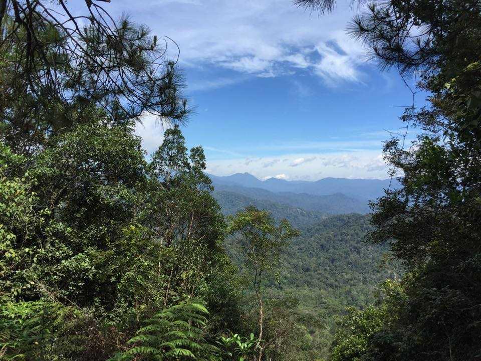 Bishop Trail