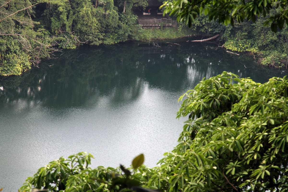 Bukit Timah Nature Reserve, Gardens in Singapore